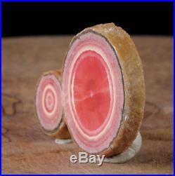 2.1 inch Pink RHODOCHROSITE Slice Capillitas Mine, Argentina Old Stock 38286