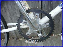 Diamond Back Silver Streak used bike old school BMX Araya rims, diacompe brake
