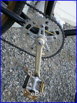 Schwinn King Sting old school BMX MTB Restored ready to ride Sidewinder Predator